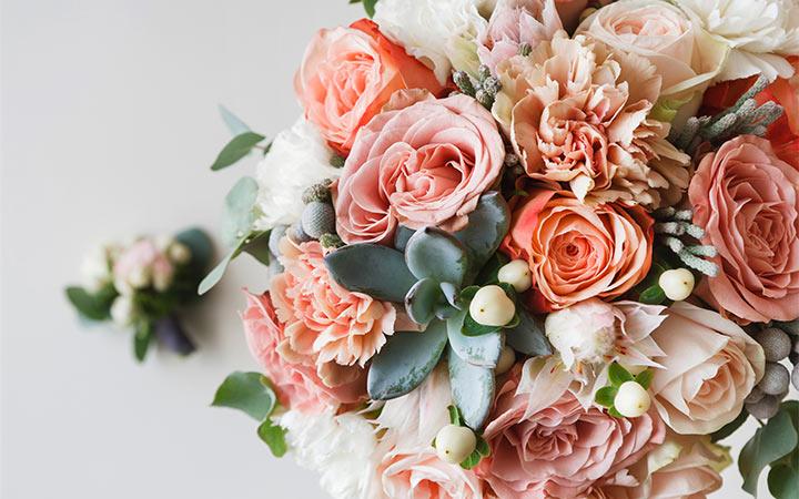 Wedding Planning Packages - Blush Weddings & Events - Sunshine Coast, Brisbane, Rainbow Beach