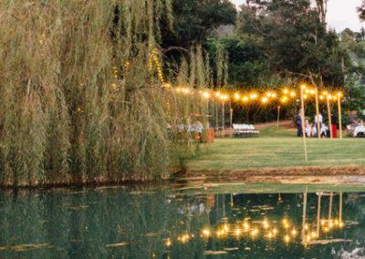 hinterland-wedding-reception_8