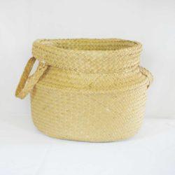 Cane Woven Basket