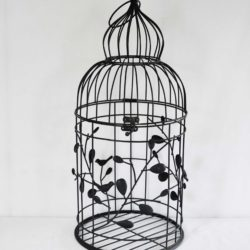Black Iron Bird Cage