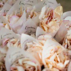 rose petal cones