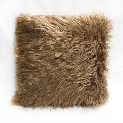 Gold Cushion